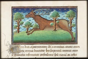 "The medieval depiction of a kind of deer. Just picture this creature in the water and you may have a ""mere-deor."""